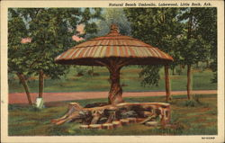 Natural Beach Umbrella, Lakewood
