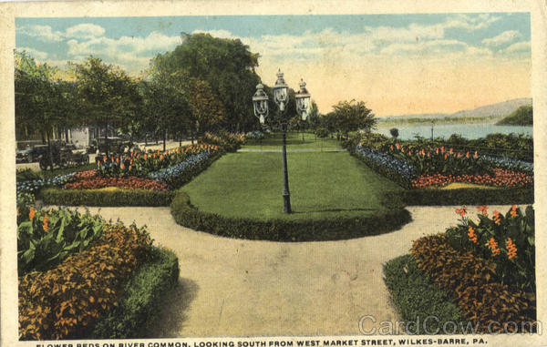Flower Beds On River Common, West Market Street Wilkes Barre Pennsylvania