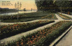 Flower Beds, River Common