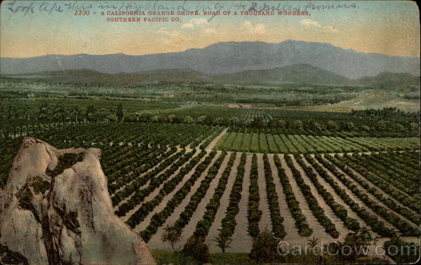 A California Orange Grove, Road of a Thousand Wonders, Southern Pacific Co