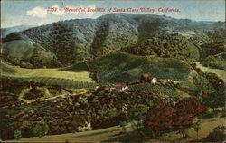 Beautiful Foothills of Santa Clara Valley