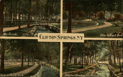 Views of Clifton Springs