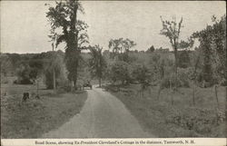 Road Scene, showing Ex-President Cleveland's Cottage in the distance Postcard