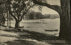 Scene at Beautiful Conesus Lake, Cove at McPherson Point