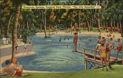 Sanlando Springs, Tropical Park Postcard