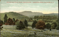 Pinacle Mountain from Nortonwood Postcard