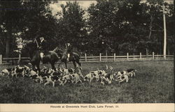 Hounds at Onwentsia Hunt Club