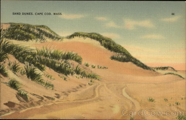 Sand Dunes Cape Cod Massachusetts