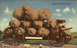 Aroostook Potatoes Postcard