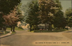 Parting of the Ways, Catskill Mountains Postcard