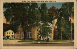 Rome Club and Historic Elm Tree