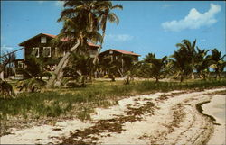 Beach and Lodges at Bill Haerr's Fishing Lodge