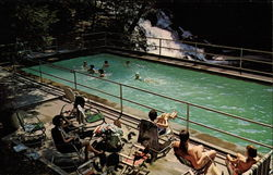 Swimming Pool, Bard College
