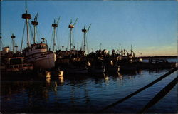 Fishing Fleet at Anchor, North Carolina Coast