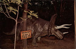 Triceratops at Prehistoric Forest