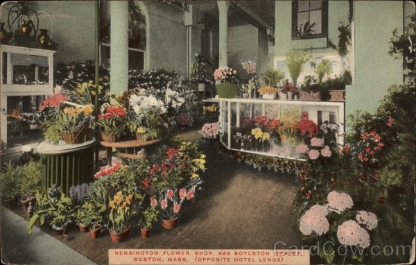 Kensington Flower Shop Boston Massachusetts