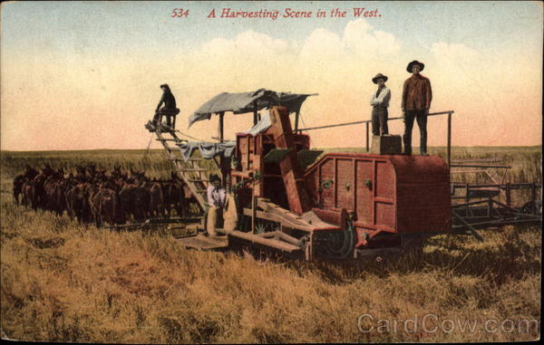 A Harvesting Scene in the West Farming