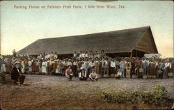 Packing House on Falkners Fruit Farm