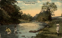 View on Westfield River