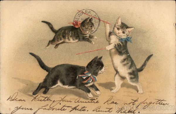 Three Cats with Ribbons around Necks Jump and Play