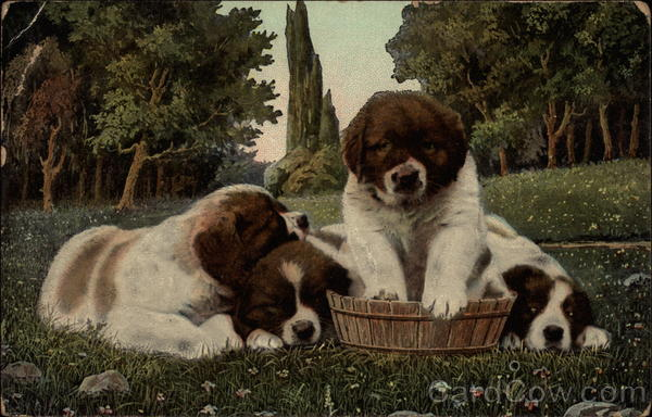 Four Puppies in basket Dogs
