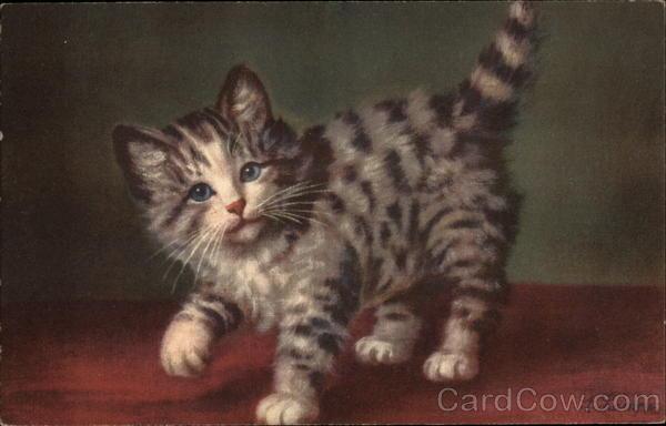 Gray Striped Kitten Cats