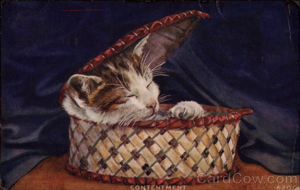 Contentment - Kitten in a Basket Cats