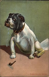 Bull Dog and Pipe