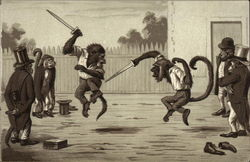 Monkeys Knife Fighting