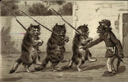Three Cats with Guns and a Monkey Drill Sargeant