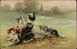 Four Cats Drinking From a Tin