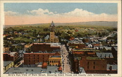 Bird's Eye View of Main Street, Showing Court House and County Jail