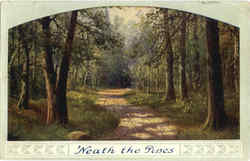 Neath the Pines