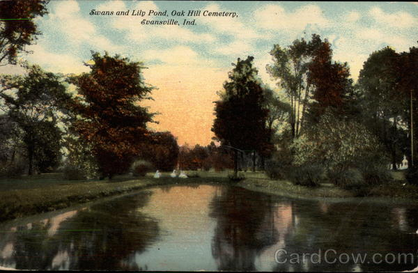 Swans and Lily Pond, Oak Hill Cemetery Evansville Indiana