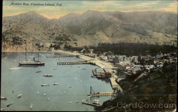 Aerial View of Avalon Bay Santa Catalina Island California