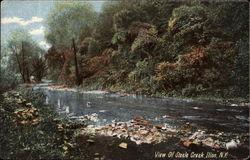 View of Steele Creek