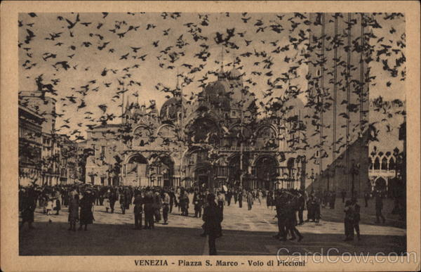 St. Mark's Square - Pigeons Flying Venice Italy