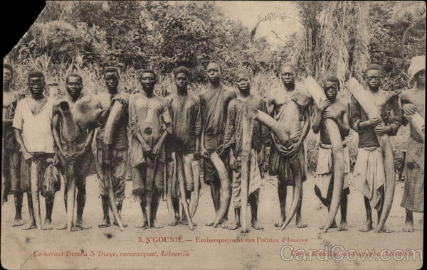 African Men Holding Tusks of Ivory Gabon