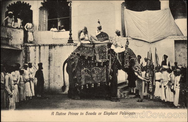 A Native Prince in Howda or Elephant Palanquin Elephants