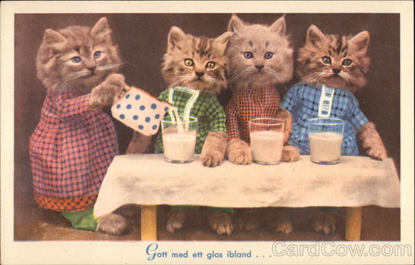 Four Kittens in Dresses Drinking Glasses of Milk Cats