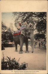 Elephant Riding Postcard