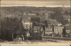 General View of Town Postcard