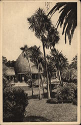 Resources Section of the Colonial Portuguese World Exhibition Postcard