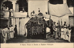 A Native Prince in Howda or Elephant Palanquin