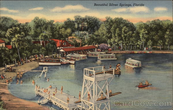 Beautiful Silver Springs Florida