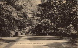 Ward Avenue, Rumson Postcard