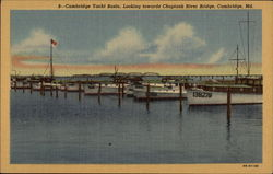 Cambridge Yacht Basin, looking towards Choptank River Bridge