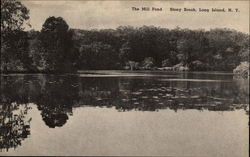The Mill Pond, Stony Brook