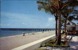 Beautiful Beach and Fishing Pier Postcard