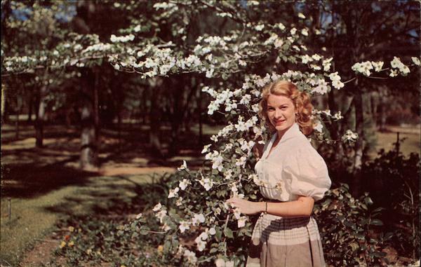 Woman Before a Dogwood Tree Silver Springs Florida